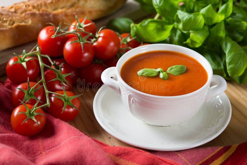 Суп томата стоковые фотографии rf