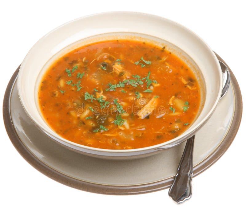 суп цыпленка пряный стоковое фото