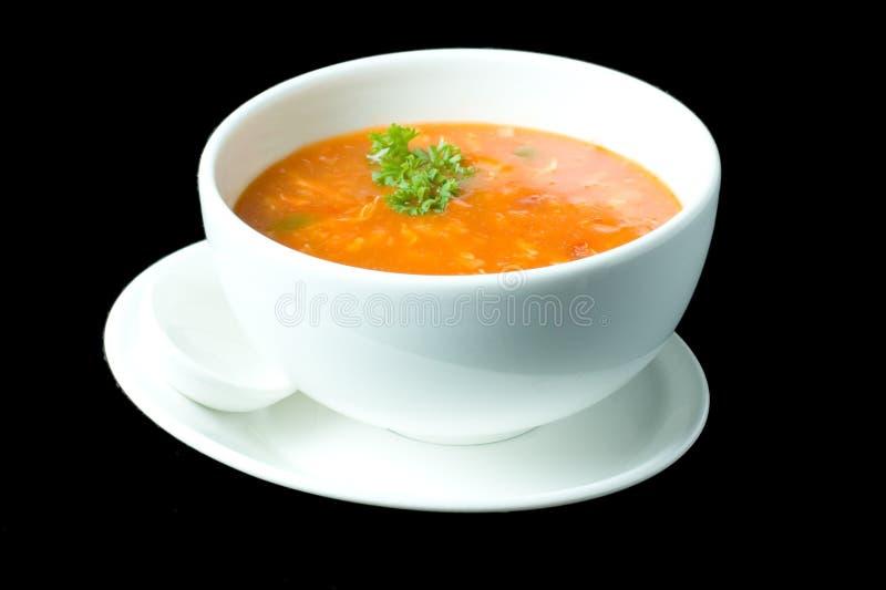 суп 6 русских толщиной стоковое фото