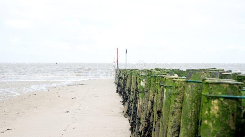Суровый пляж Северного моря стоковая фотография