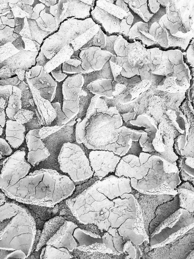 сухая земля стоковые изображения rf