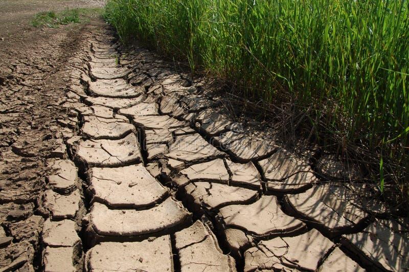 сухая земля стоковое изображение rf