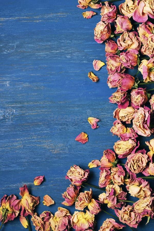 Сухая предпосылка роз стоковые изображения