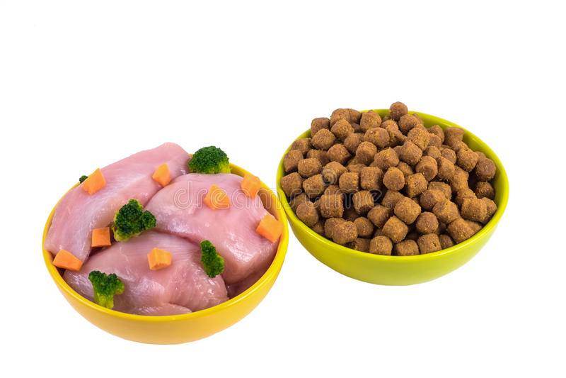 Сухая собачья еда и естественная собачья еда в керамических шарах изолированных на w стоковое изображение rf