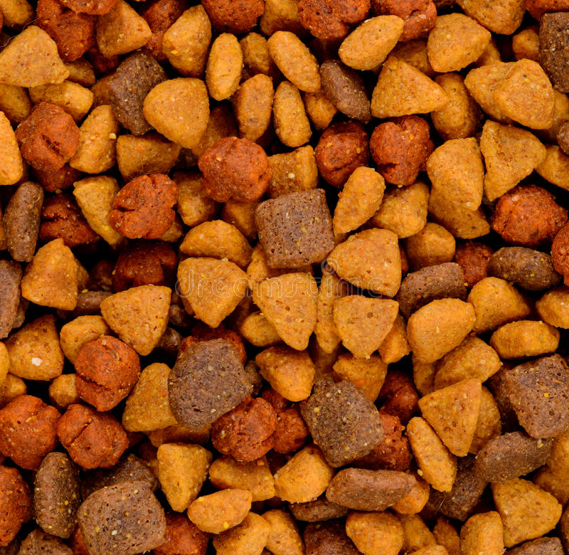 Сухая собачья еда стоковое фото rf