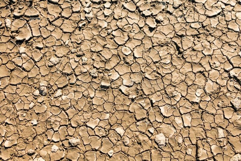 сухая, треснутая грязь стоковое фото
