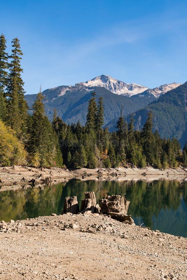 Сухие журналы и пни дерева на сухом береге озера хлебопек в северных каскадах стоковое изображение