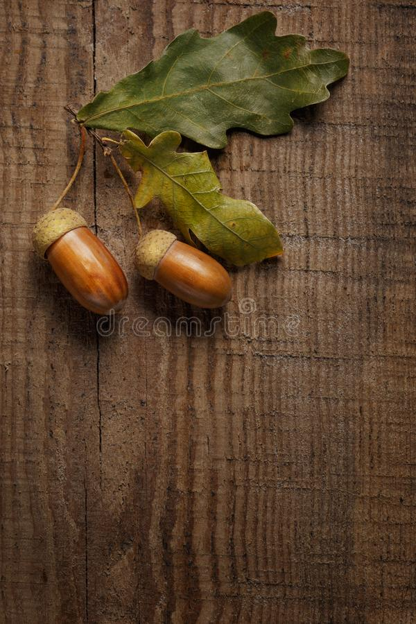сухие листья и жолудь на деревянной предпосылке стоковое изображение rf