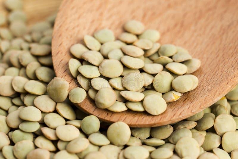 Сухие органические зеленые чечевицы стоковое фото