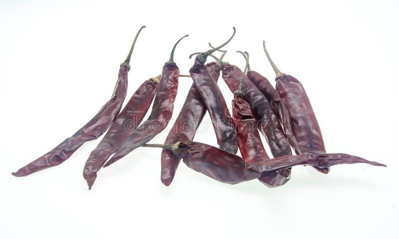 Сухие перцы chili/паприки изолированные на белой предпосылке стоковое фото
