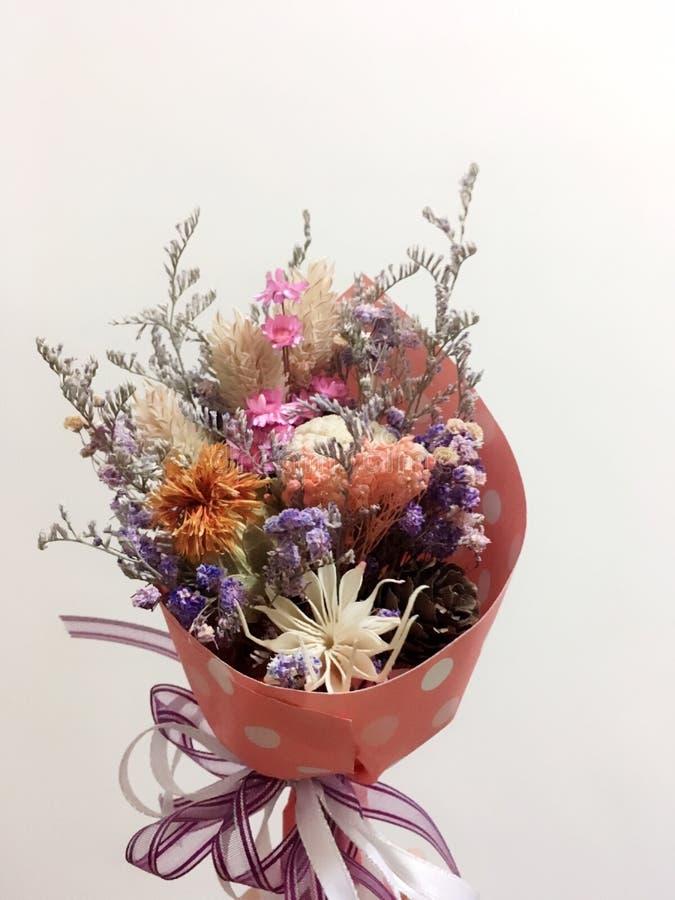 Сухие цветки красочные стоковая фотография rf