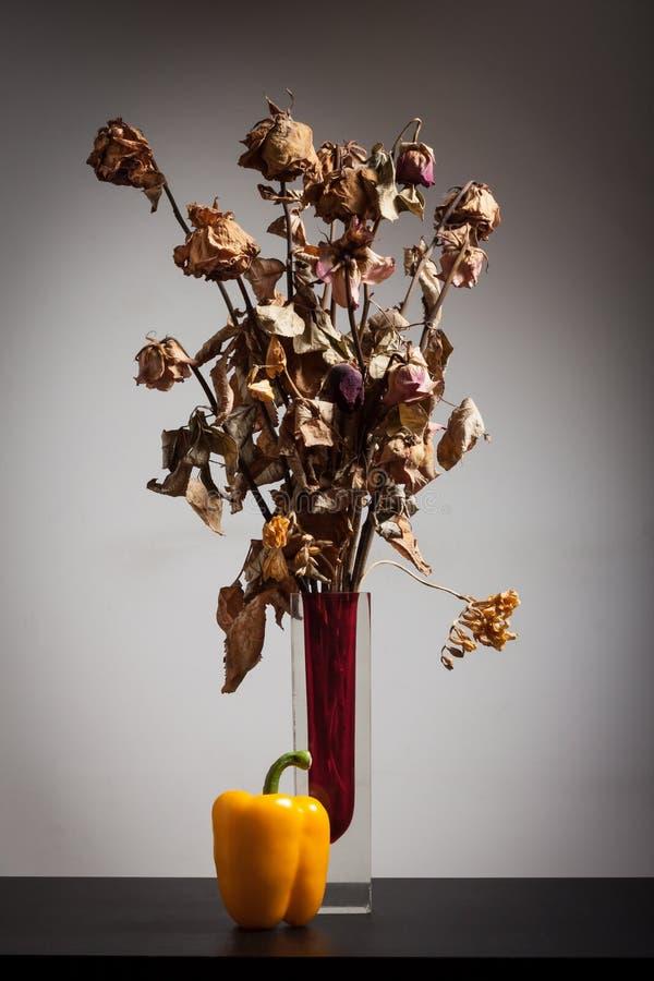 Сухие цветки с желтым перцем стоковые фото