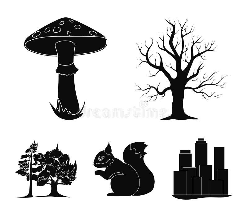 Сухое дерево, протеин, ядовитый грибок, лесной пожар Значки собрания леса установленные в черном стиле vector запас символа иллюстрация вектора