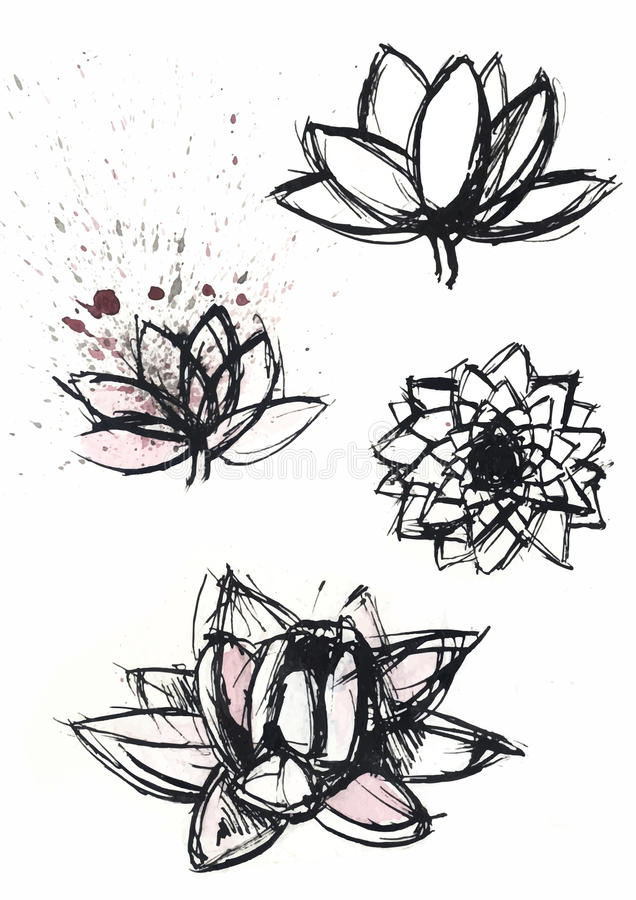 Сухой комплект лотоса щетки иллюстрация штока