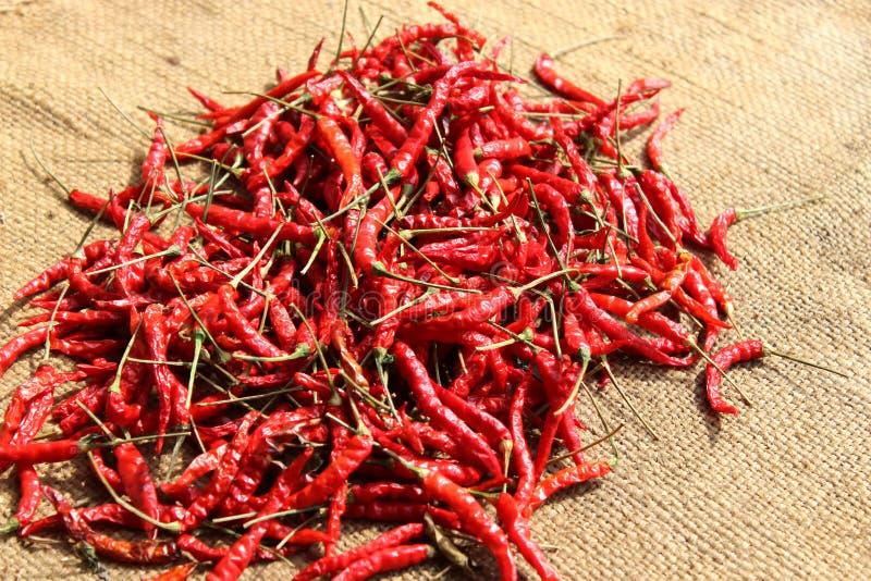 Сухой chili на сумке реднины стоковая фотография