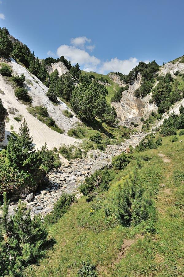 Сухой riverbed стоковое изображение rf