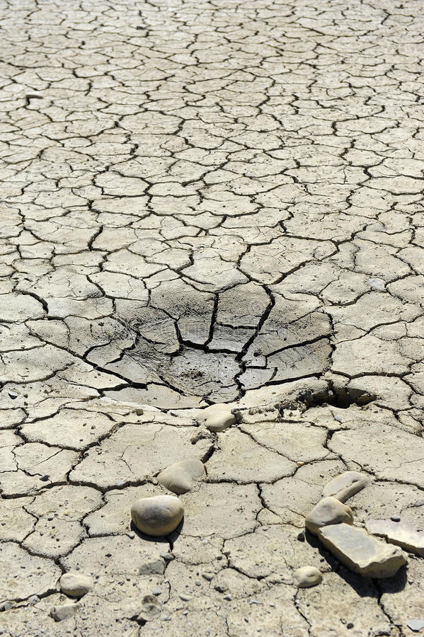 суша почва стоковые фото