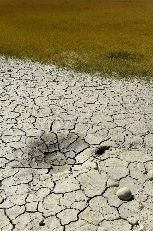 суша почва стоковое фото rf