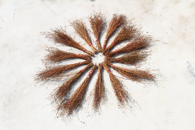Сушить веников стоковое фото