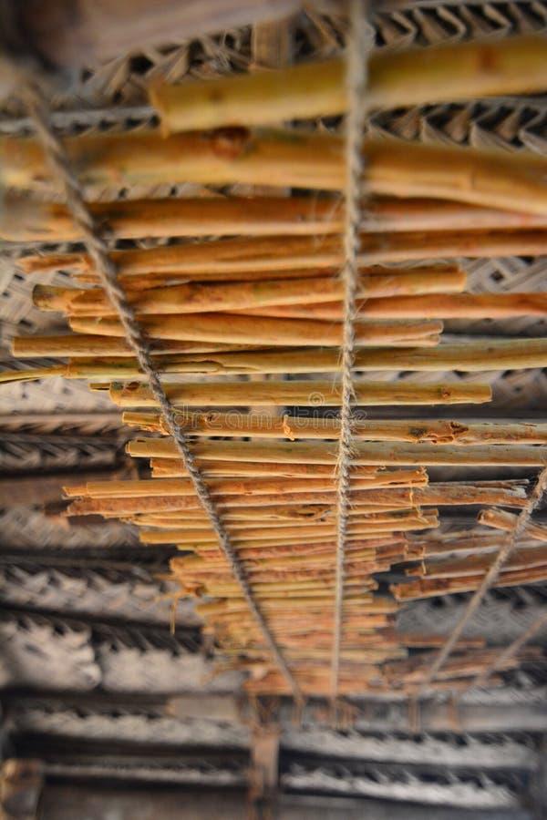 Сушить ручек циннамона Заболоченные места ganga Madu Balapitiya Sri Lanka стоковые изображения