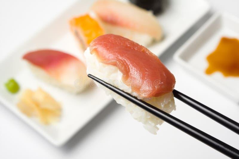суши серии nigiri maguro стоковые фото