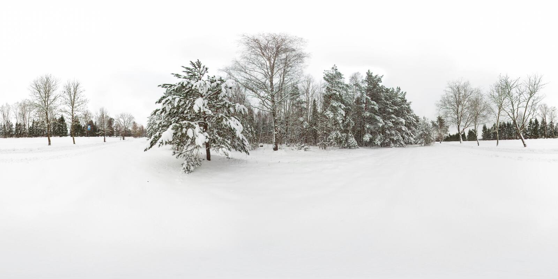 сферически панорама 3D леса зимы со снегом и сосен с углом наблюдения 360 градусов Подготавливайте для виртуальной реальности в v иллюстрация штока