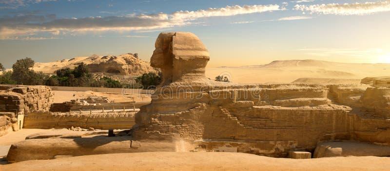 Сфинкс в пустыне стоковые фото