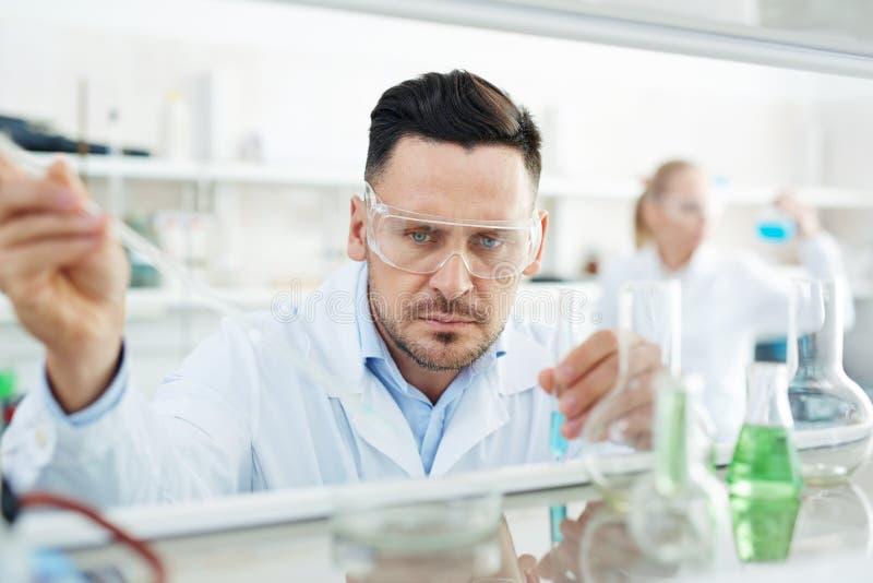 Сфокусированный био химик работая в лаборатории стоковая фотография rf