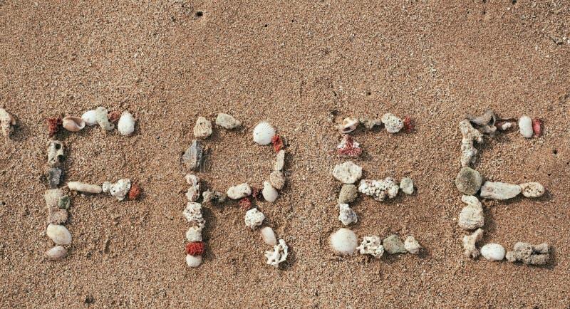Сформулируйте свободно сделанный от раковин моря на песчаном пляже стоковые изображения rf