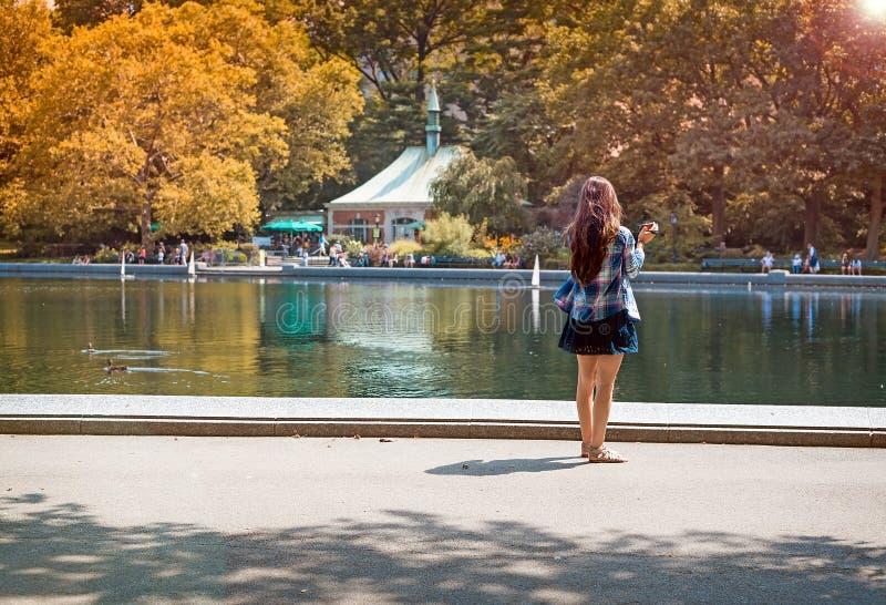 Сфотографируйте на парке стоковые фотографии rf