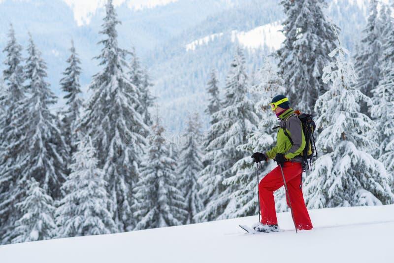Схватки авантюриста через глубокий снег в snowshoes стоковое фото