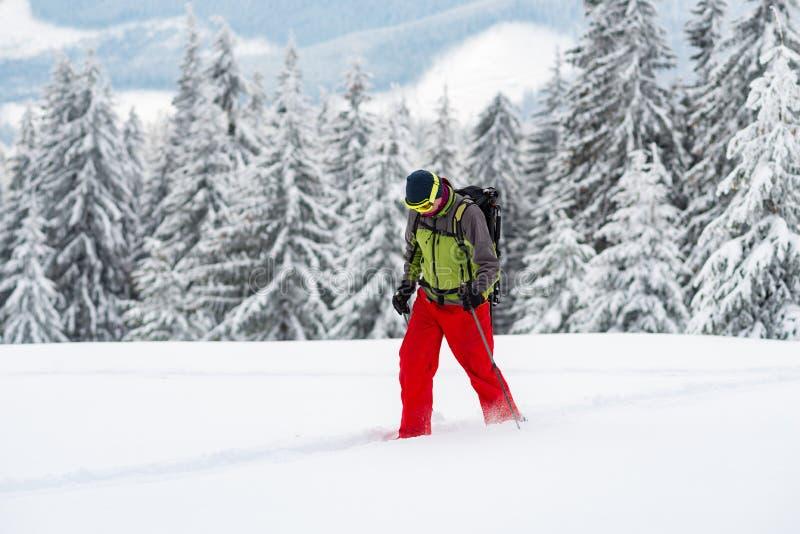 Схватки авантюриста через глубокий снег стоковая фотография rf