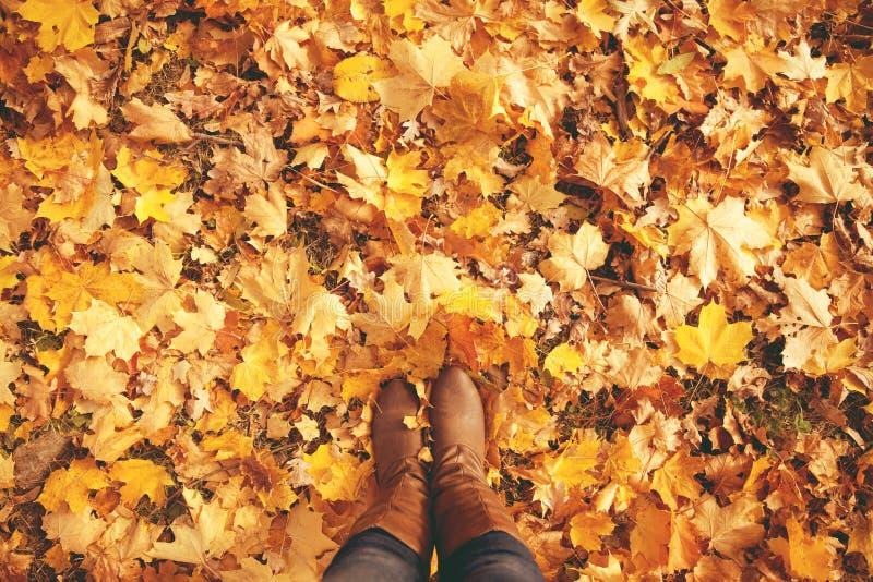 Схематические ноги в ботинках на листьях осени Ноги ботинок walkin стоковое фото rf