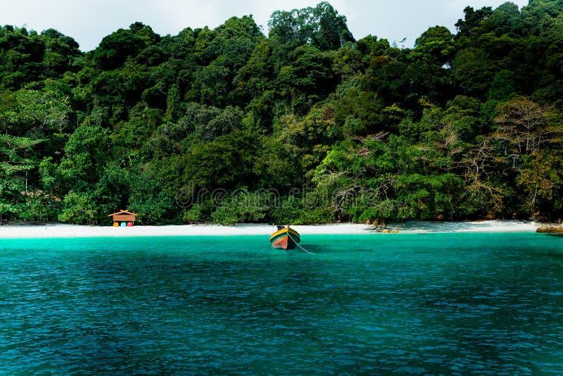 Схематический кинематографический цвет шлюпки пляжа и длинного хвоста в острове цветка в Таиланде стоковое изображение rf