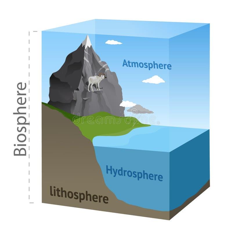 Схема биосферы иллюстрация вектора