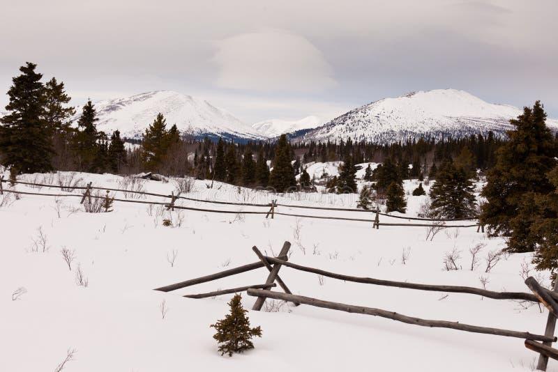 Сценарная загородка ранчо гор зимы Юкона Канады стоковое изображение rf