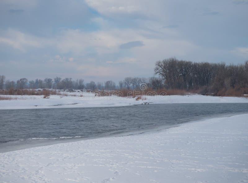 Сценарная Река Йеллоустоун в зиме стоковые фотографии rf