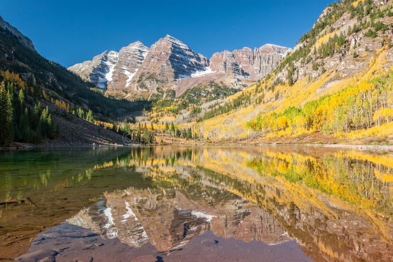 Сценарная maroon осина Колорадо колоколов в падении стоковая фотография rf