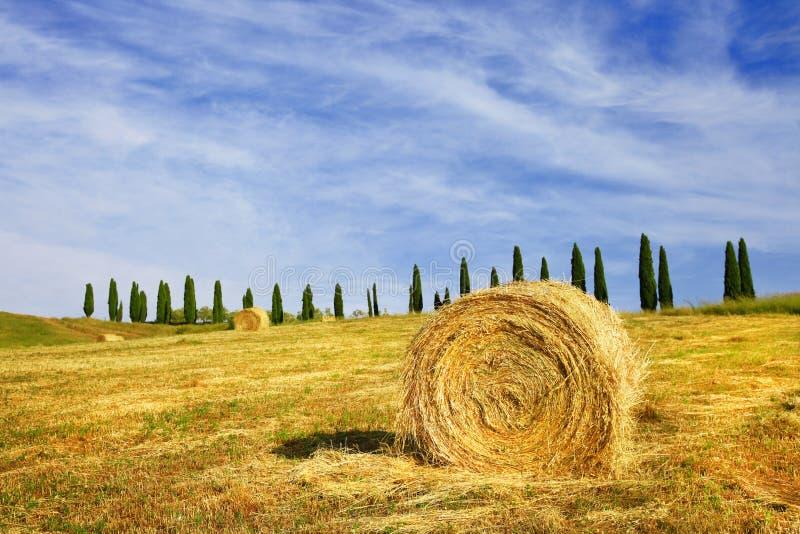 Сценарные ландшафты Тосканы, Италии стоковые изображения
