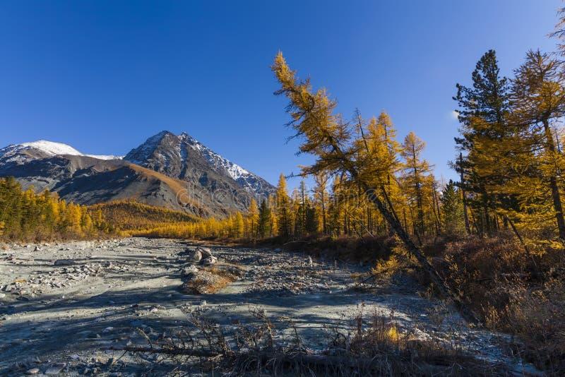 Сценарный ландшафт горы в осени стоковые изображения rf