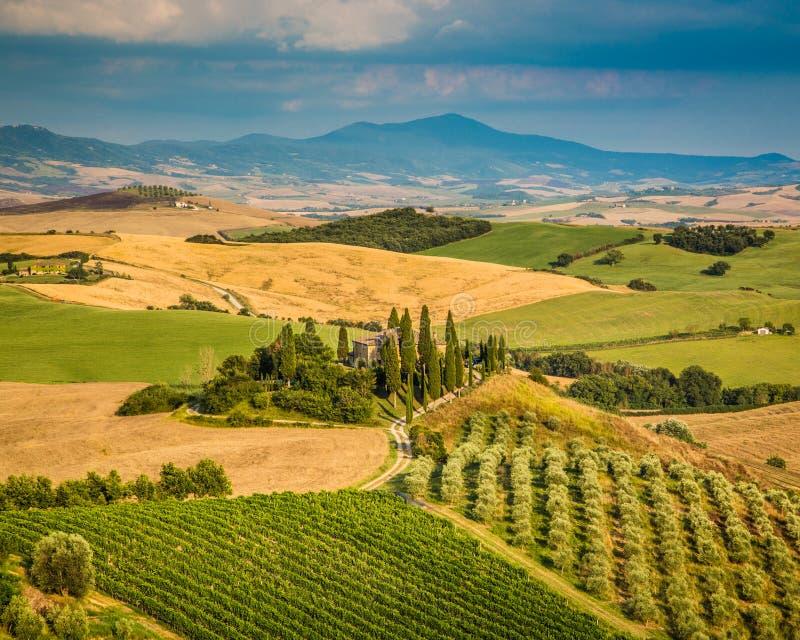 Сценарный ландшафт Тосканы на заходе солнца, d'Orcia Val, Италии стоковые изображения rf