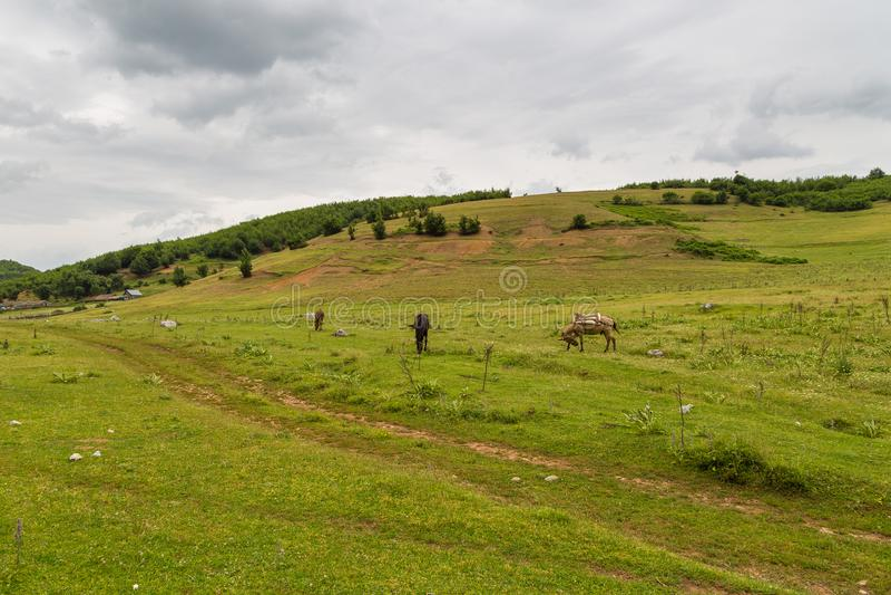 Сценарный взгляд в албанской горе, прикорм ландшафта стоковое фото