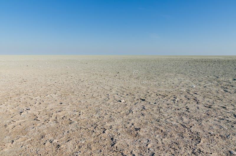 Сценарный взгляд над сухим ландшафтом лотка Etosha в национальном парке Etosha, Намибии, Южной Африке стоковое изображение