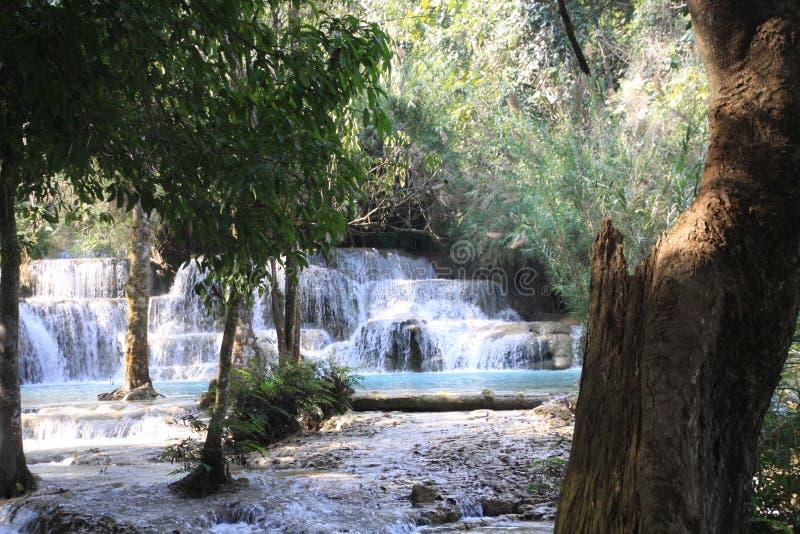 Сценарный взгляд на каскадах и естественном голубом бассейне идилличных водопадов Kuang Si в джунглях стоковые изображения