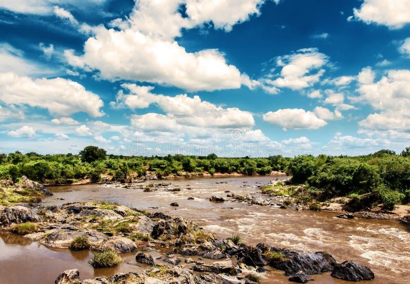 Сценарный взгляд на реке Mara в Африке стоковые фотографии rf