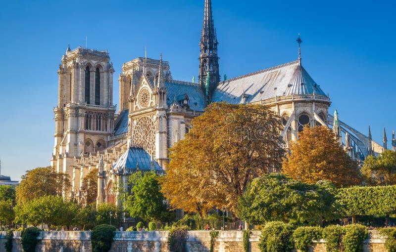 Сценарный взгляд Нотр-Дам de Парижа, Франции стоковое изображение rf