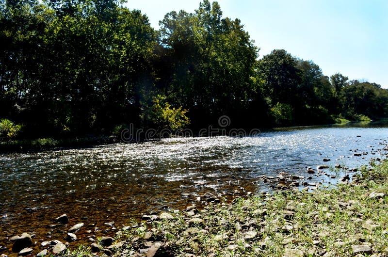 Сценарный взгляд реки a пропуская и скалистого банка в лесе стоковые изображения