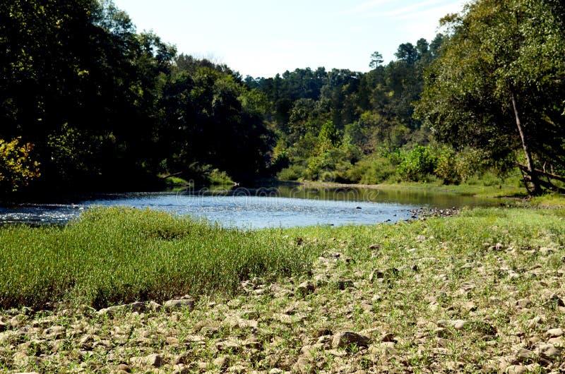 Сценарный взгляд реки a пропуская и скалистого банка в лесе стоковое изображение