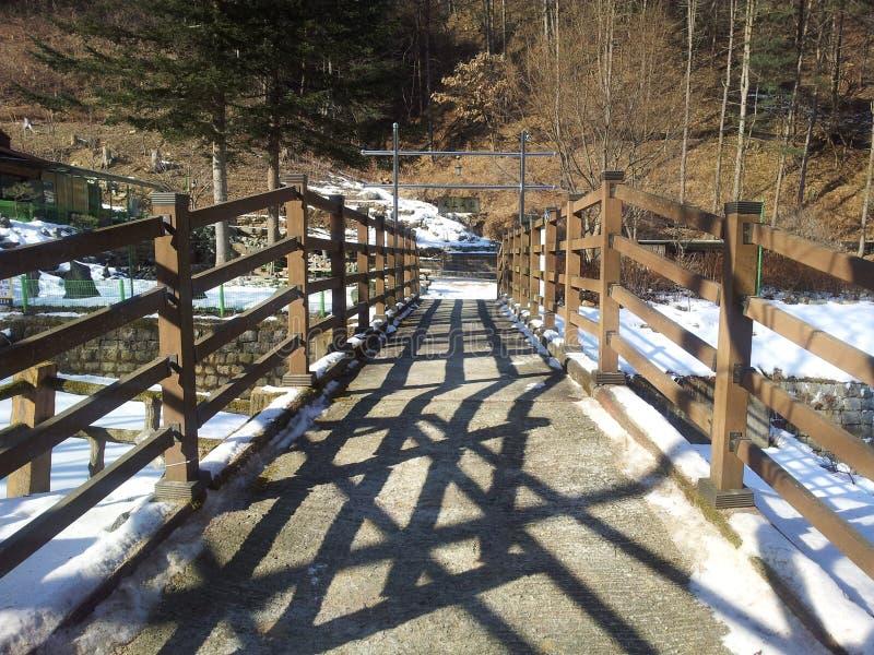 Сценарный взгляд современного моста с деревянной дорожкой палубы стоковые фотографии rf