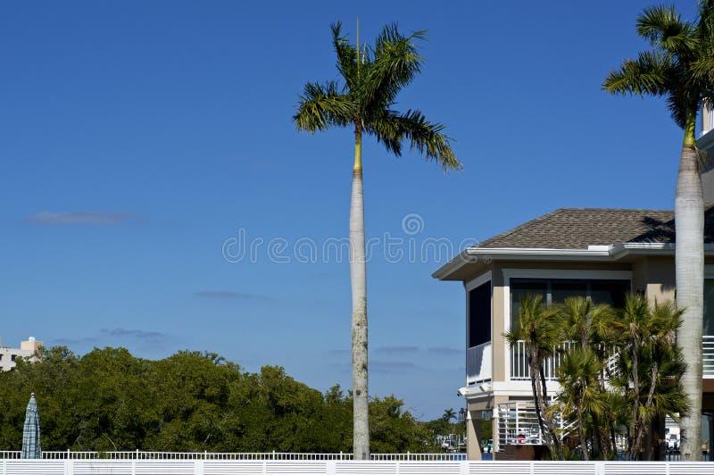 Сценарный взгляд Bonita Springs с пальмами и поднятым домом стоковое фото rf